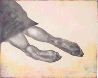 Kiki_smith_still_2006